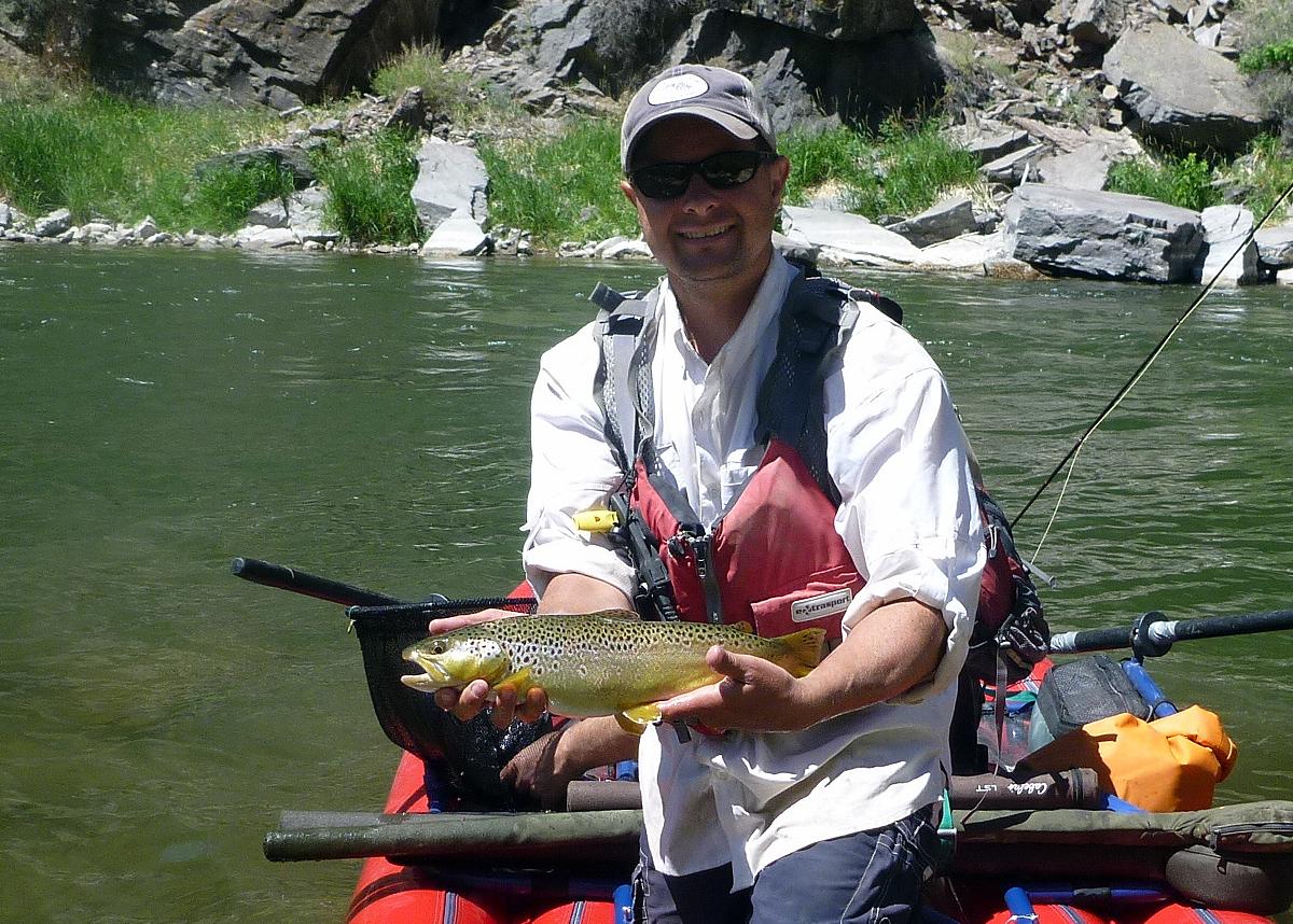 brown trout gunnison river