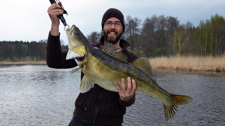 gös gösfiske vaxholm 7 kg