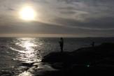 fiske vättern